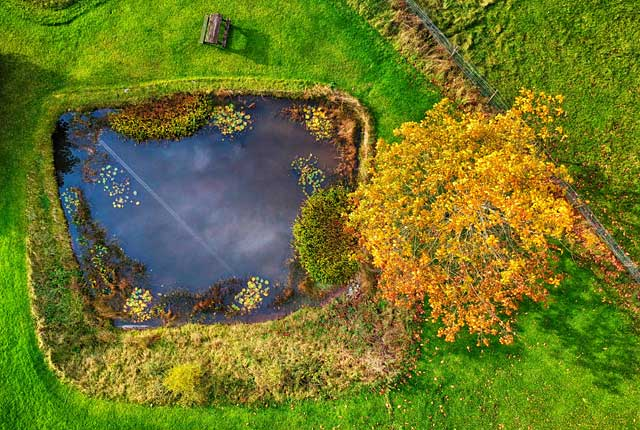 財源論の池